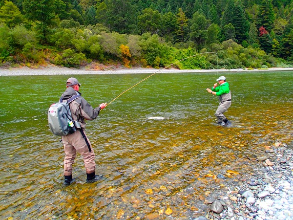 Dax Messett helps land a steelhead